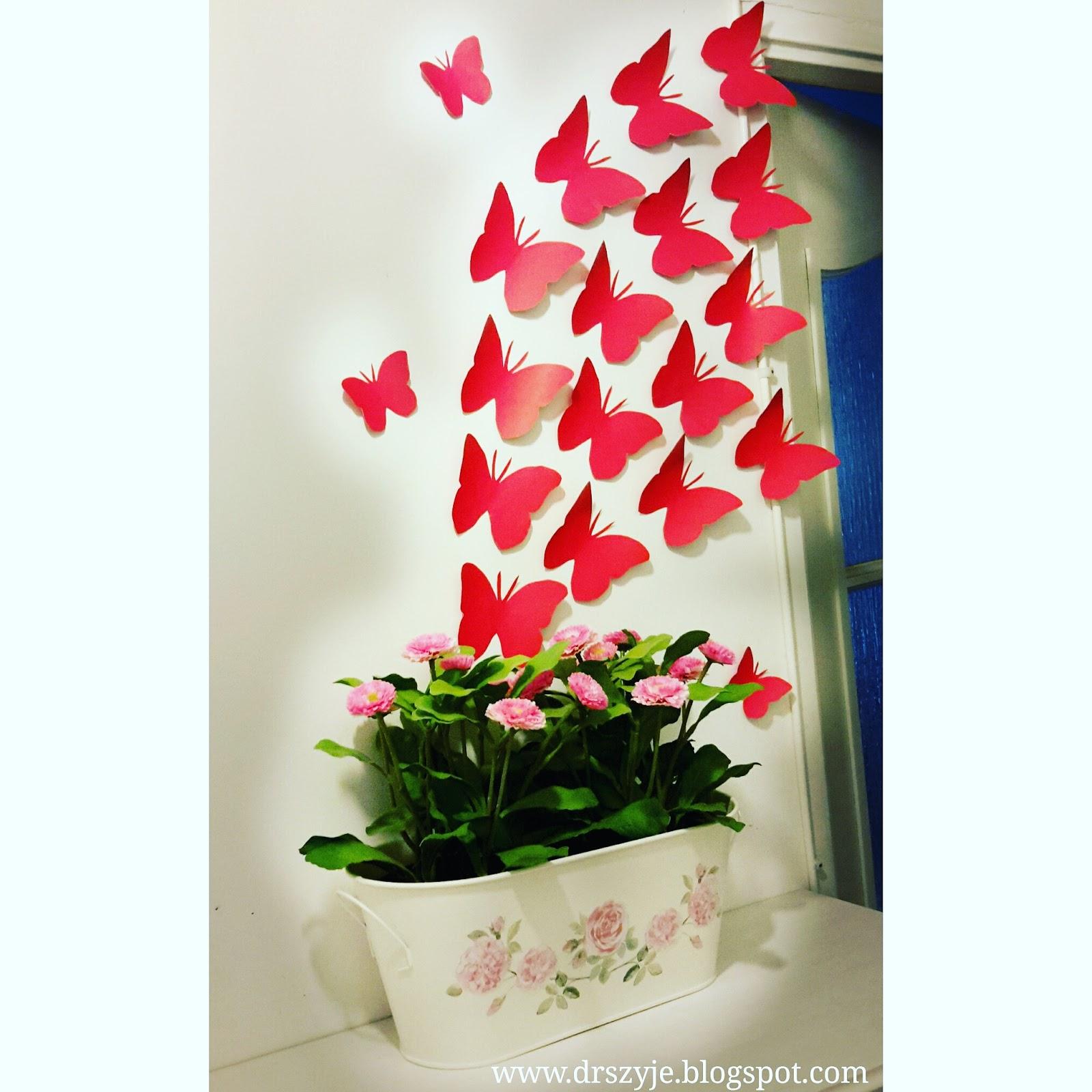 Zima tuż tuż, a u mnie motyle